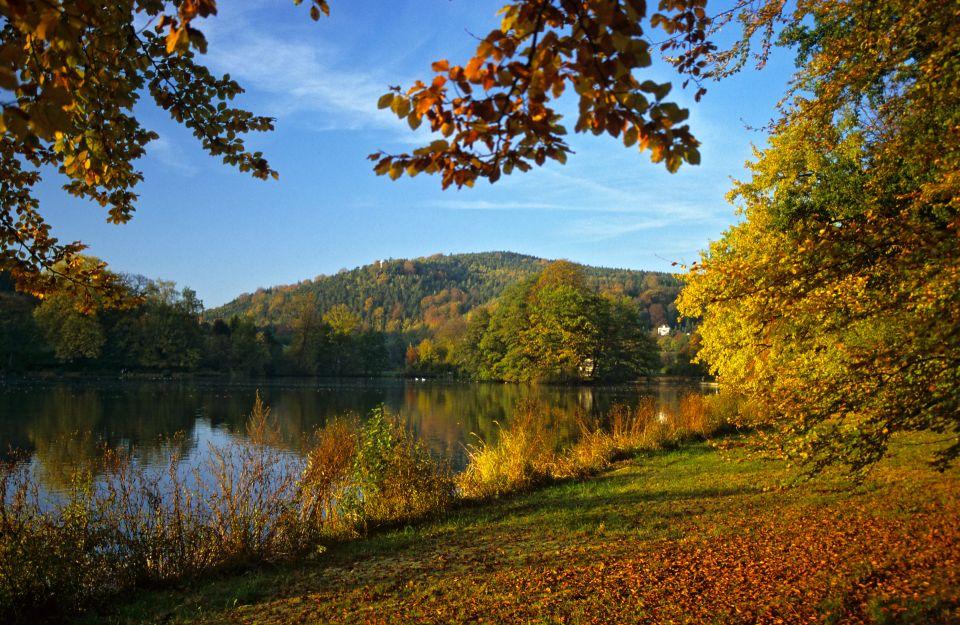 Greizer Park im Herbst © Frank Leo/fokus-natur.de